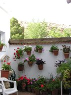 pation andaluz en hostal soledao